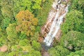 overhead shot of tropical waterfalls