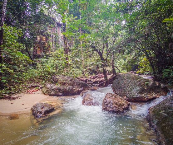 10 Hidden Nature Getaways Less than an Hour Away from Kuala Lumpur for your Next Family Staycation